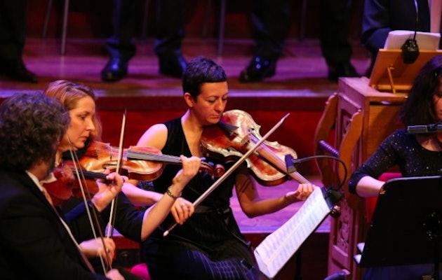 orkest-strijkers